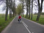 Стандартная дорога Калининградской области