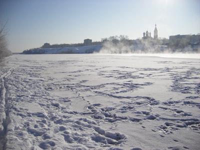 Лед истоптан воронами и лисами