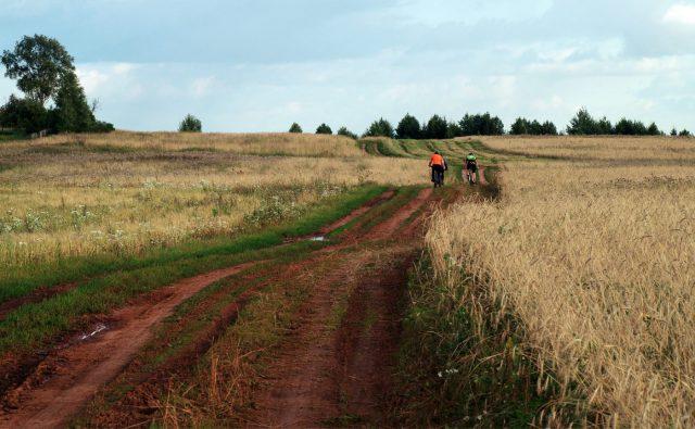 О встречных велосипедистах