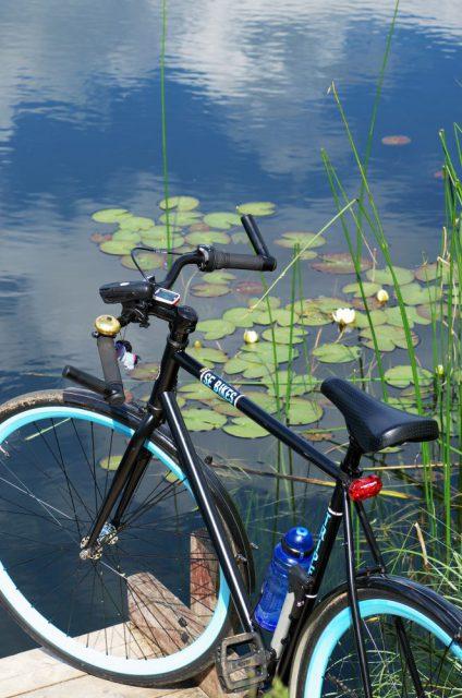 Le vélo et les blancs nénuphars