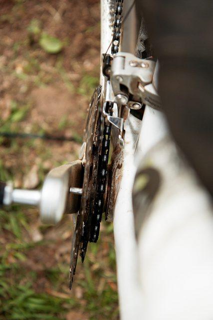 Результат наезда злобного дерева на мирного велосипедиста